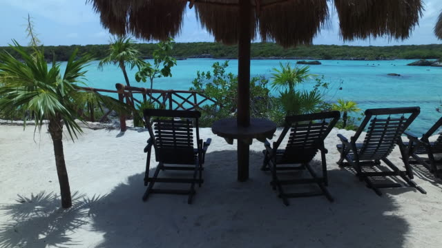 vídeos de stock, filmes e b-roll de thatched roof and chairs in mexico - arbusto tropical