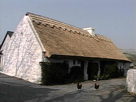 thatched roof cottage in county clare - strohdach stock-videos und b-roll-filmmaterial