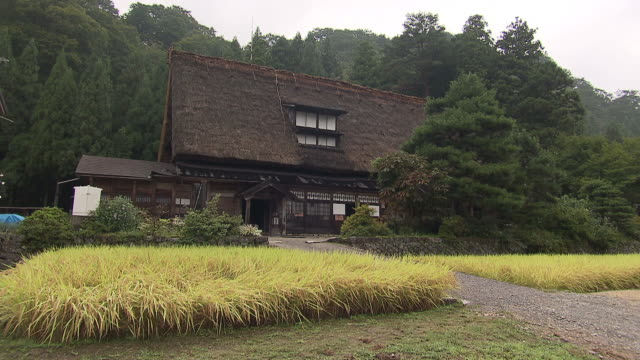 thatched roof house in toyama, japan - toyama prefecture stock videos and b-roll footage