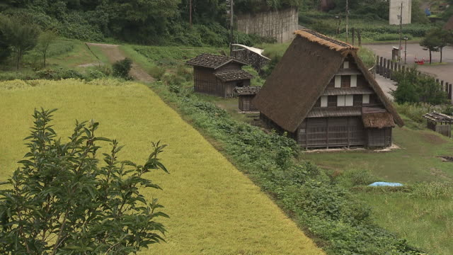 thatched roof house in toyama, japan - thatched roof stock videos and b-roll footage