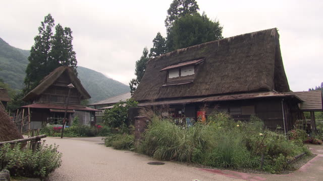 thatched roof houses in toyama, japan - 村点の映像素材/bロール