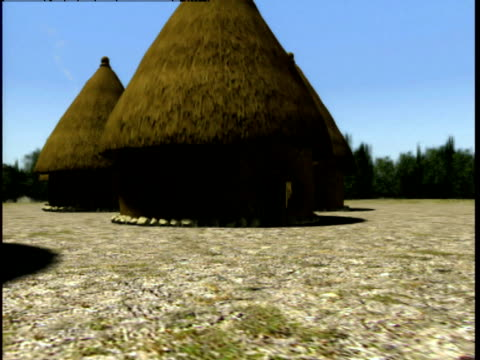 thatched roofs cover homes in a small ancient settlement. - strohdach stock-videos und b-roll-filmmaterial
