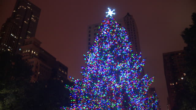 wgn the 104th lighting of chicago's official christmas tree in millennium park at washington street and michigan avenue on nov 17 2017 - クリスマスツリー点灯式点の映像素材/bロール