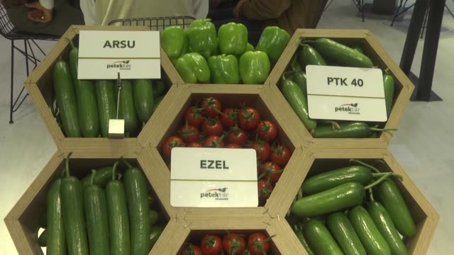 the 18th international greenhouse agricultural technologies and livestock fair growtech eurasia kicks off at antalya expo center on november 28 2018... - eurasia stock videos and b-roll footage
