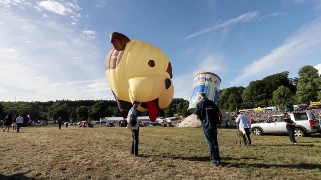The 2018 Bristol Balloon Fiesta has started in the southwestern English city marking 40 years since its conception by founder Don Cameron
