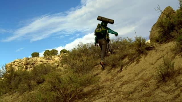 30 歳若い男は、旅行者は、米国ユタ州を歩きます。 - 見渡す点の映像素材/bロール