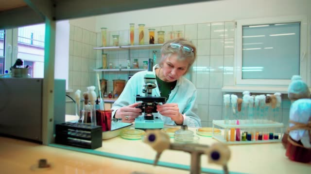 vídeos y material grabado en eventos de stock de la 50 años de edad seria mujer atractiva, científico, trabajando con el cultivo bacteriano y microscopio en el laboratorio de microbiología de la universidad - 50 54 years
