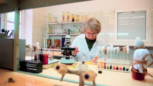50 年古い魅力的な深刻な女性、科学者、大学微生物学研究室で顕微鏡細菌文化の使用 - 50 54 years点の映像素材/bロール