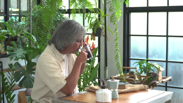 the activity and lifestyle of asian active senior man with white hair after retirement as an environmentalist,  florist having happiness, relaxation with the tropical tree, drinking coffee among gardening as hobbies, and small business in the greenhouse. - white hair stock videos & royalty-free footage