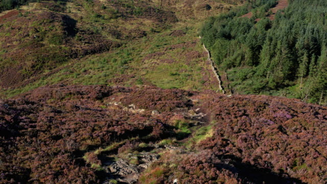 the aerial from a drone as it is flown over a cairn on a scottish hilltop - johnfscott stock videos & royalty-free footage