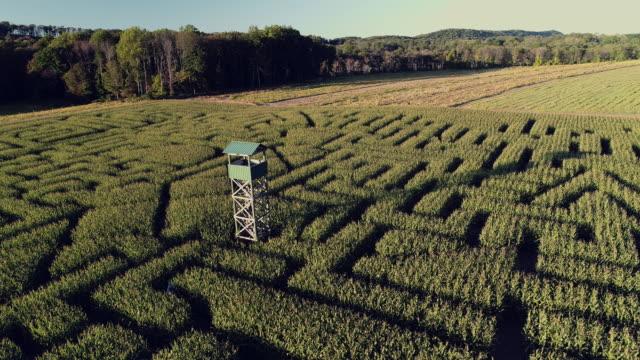 ペンシルベニア州ポコノス地域に巨大なハロウィーンのトウモロコシ迷路の空中風景パノラマ ドローン ビデオ - 迷路点の映像素材/bロール
