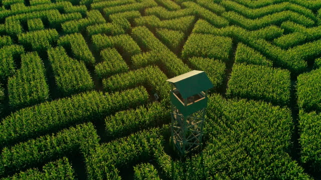 the aerial scenery panoramic drone video of the huge halloween's corn maze in pennsylvania, poconos region - maze stock videos and b-roll footage