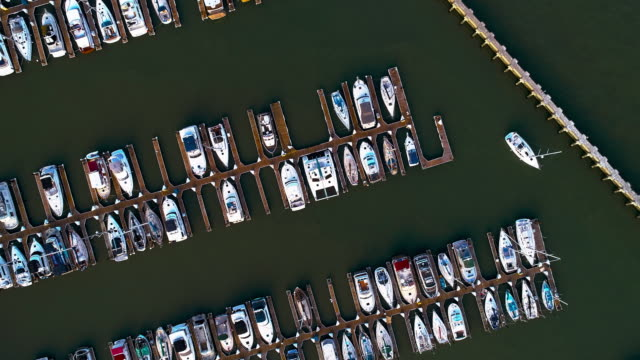 the aerial top directly above view of yachts and boats in the marina in san francisco, california - marina stock videos & royalty-free footage