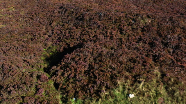 the aerial view from a drone as it is flow low over a cairn on a scottish hilltop - johnfscott stock videos & royalty-free footage