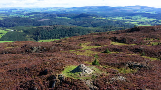 the aerial view from a drone as it is flown over the top of a scottish hill in early morning summer sunlight - johnfscott stock videos & royalty-free footage