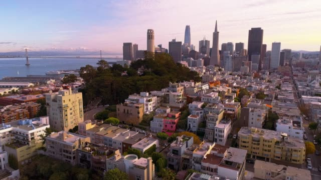 the aerial view of san francisco downtown at sunset, over the residential district - san francisco california video stock e b–roll
