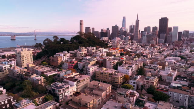 the aerial view of san francisco downtown at sunset, over the residential district - coit tower stock videos & royalty-free footage