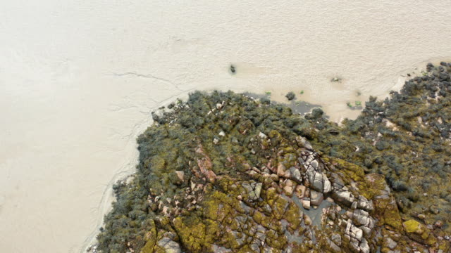 the aerial view of seaweed on rocks at low tide on a beach in dumfries and galloway - low tide stock videos & royalty-free footage