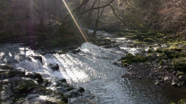 the afon nedd river in powys, wales, uk - powys stock videos & royalty-free footage