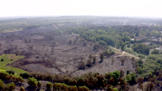 the aftermath of a huge fire on chobham common in surrey. video by chris gorman / getty images 9th august 2020 - smoke physical structure stock videos & royalty-free footage