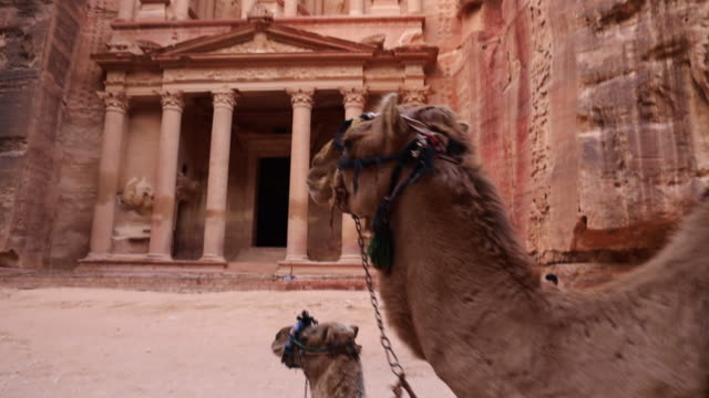 vidéos et rushes de the al-khazneh tomb in the city of petra with camels. - civilisation ancienne