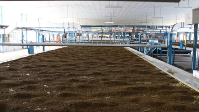 the already dried tea powder being transported from one assembly line to another. darjeeling tea is a tea from the darjeeling district in west... - var bildbanksvideor och videomaterial från bakom kulisserna