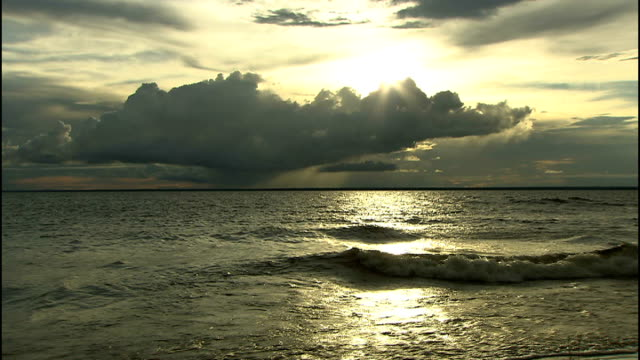 tapajos river at sunset long duration shot of waves lapping at beach with cloudy sky and bright sun in background / close up of tarantula spider /... - arachnid stock videos and b-roll footage