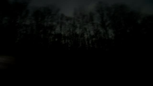 Pennsylvania Lancaster County EXT / DUSK **Music overlaid SOT** SHOT past trees in forest NIGHT TRACKING SHOT along road past horsedrawn carriage...