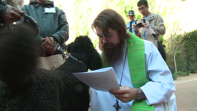 """WGN The annual """"Blessing of the Animals"""" was held on Oct 1 in Chicago's South Loop neighborhood to celebrate the Feast Day of St Francis of Assisi..."""