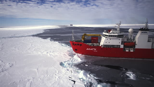the antarctic - icebreaker anchored at sea ice - anchored stock-videos und b-roll-filmmaterial