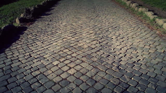 the appian way in rome, or via appia antica - rome italy stock videos & royalty-free footage