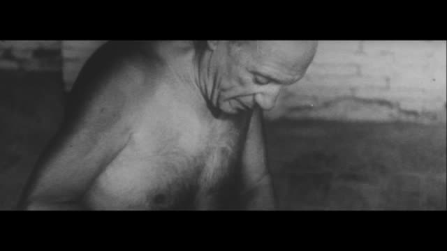 vidéos et rushes de the art of picasso/creative activities at 83yearold picasso's studio mainichi shimbun preparing to host 'picasso exhibition' ikeda attends opening... - cérémonie