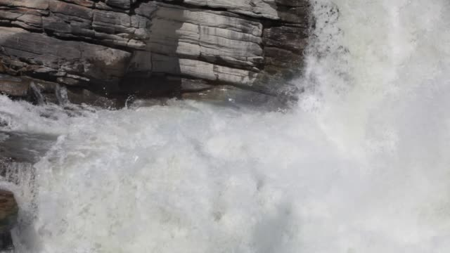 the athabasca falls in the jasper national park, canadian rockies. - athabasca falls stock videos & royalty-free footage