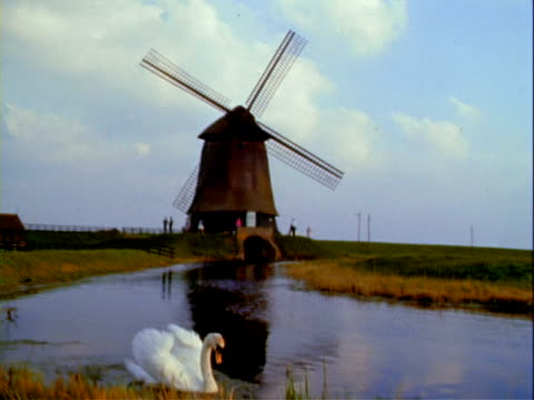 the atomium monument in heysel park in brussels a camper trailer drives under the sculpture / windmill a white swan swims in a pond in the foreground... - camper trailer stock videos and b-roll footage