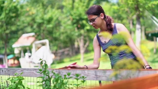 vídeos y material grabado en eventos de stock de la muchacha atractiva adolescente de 15 años pintando la valla en el patio trasero. el video con el cambio de enfoque de primer plano al personaje - 14 15 years