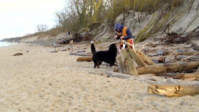 冷たいバルト海と走り回って彼女ベルギー ・ マウンテン ・ ドッグの冬のビーチで魔法瓶から熱いお茶を飲んで魅力的のアクティブな 50 歳熟女 - 50 54 years点の映像素材/bロール