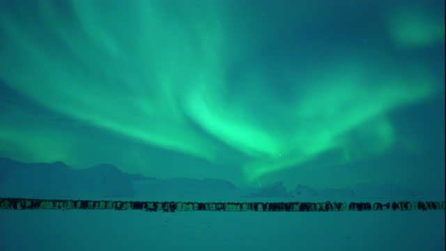the aurora australis brightens the sky over a colony of emperor penguins. - aurora australis stock videos & royalty-free footage