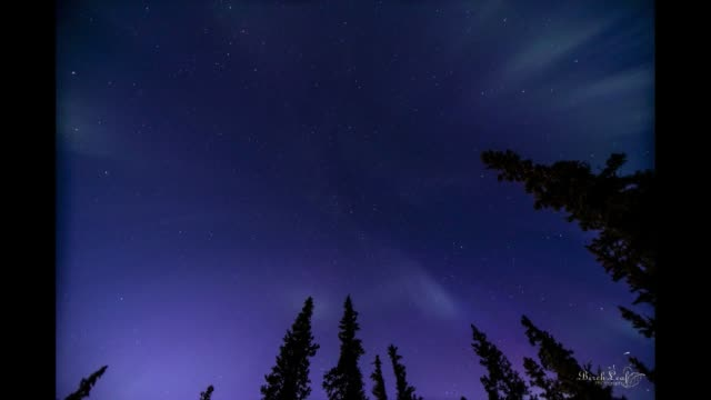 the aurora borealis or northern lights dazzled on the evening of august 25 2018 in alaska even experienced night sky watchers were anxiously awaiting... - altri temi video stock e b–roll