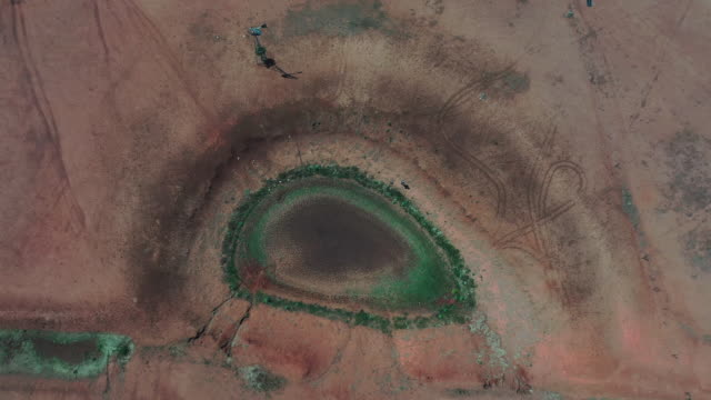 vídeos y material grabado en eventos de stock de the australian bureau of meteorology has declared the ongoing drought across the murray darling basin to be the worst on record with current... - el milenio