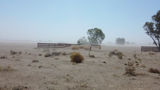 vídeos y material grabado en eventos de stock de the australian bureau of meteorology has declared the ongoing drought across the murray darling basin to be the worst on record with current... - nueva gales del sur