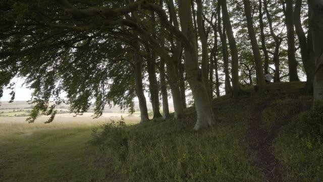 the avebury barrows at overton hill - avebury stock videos & royalty-free footage