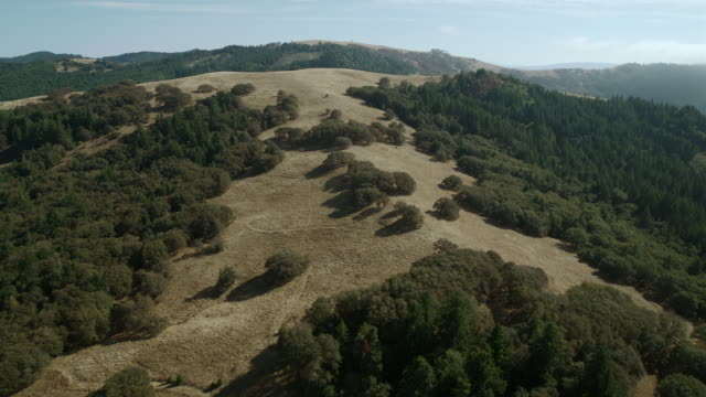 The Bald Hills, foothills of the Northern Coast Range in Humboldt County, California.