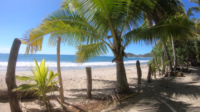 pov of the beach and palm trees. - slow motion - goodsportvideo stock videos and b-roll footage