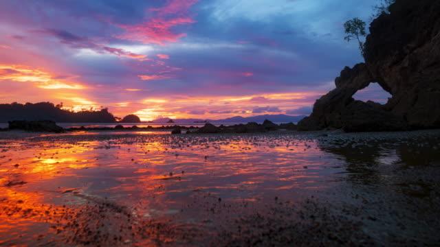 stranden vid solnedgången payam island, ranong thailand - tropiskt träd bildbanksvideor och videomaterial från bakom kulisserna