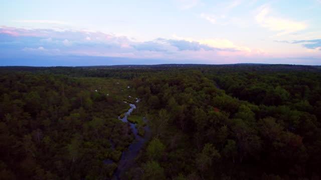den vackra floden nära långa dammen road, poconos, pennsylvania, usa - poconobergen bildbanksvideor och videomaterial från bakom kulisserna
