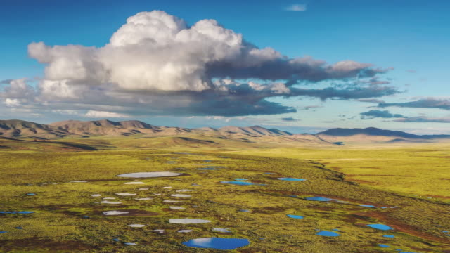 the beautiful scenery of qinghai in china - bog stock videos & royalty-free footage