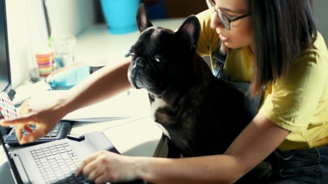 vídeos de stock e filmes b-roll de the best assistant - caos