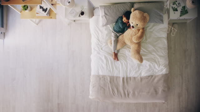 the best cuddle buddy ever - teddy bear stock videos and b-roll footage