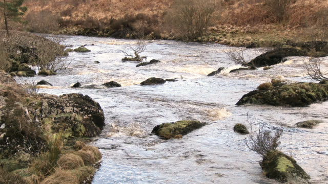 the black water of dee, dumfries and galloway, scotland - dumfries and galloway stock videos & royalty-free footage
