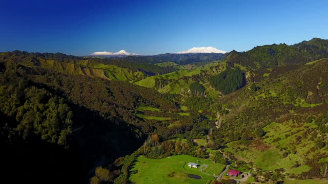 the blue duck station in the whanganui national park is a working sheep and cattle ranch which caters to tourism. mount doom (mount ngauruhoe) and tongariro are seen in the background. - tongariro national park stock videos & royalty-free footage